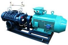 VR系列水蒸汽罗茨压缩机的图片