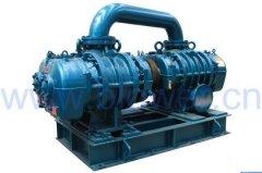 TRR系列双级串联罗茨真空泵的图片