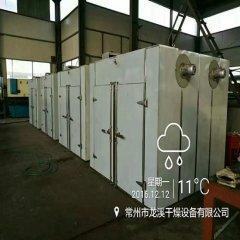 江苏龙溪干燥制生产静态节能型热风烘箱  热风循环烘箱    GMP烘箱的图片