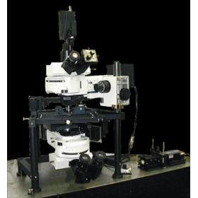 Nanonics 原子力顯微鏡-MV4000