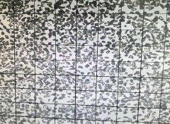 绿碳化硅微粉 8000#颗粒形状