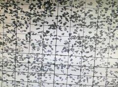 绿碳化硅微粉 10000#颗粒形状
