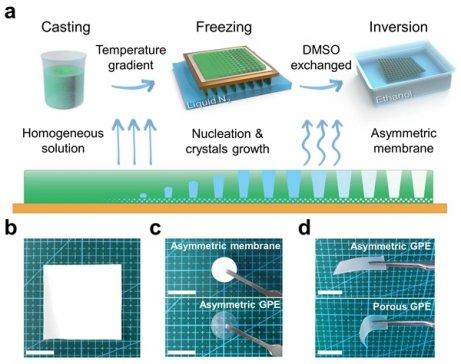 苏州纳米所在非对称凝胶电解质助力无枝晶金属锂电池研究方面取得进展