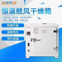 电热恒温鼓风干燥箱的图片