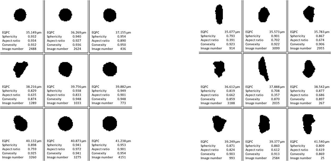 动态图像分析石墨粉