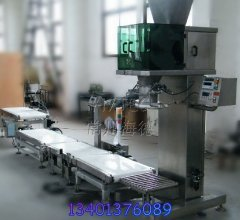 H9652型粉体/染料包装秤