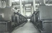 DWT系列脫水蔬菜干燥機