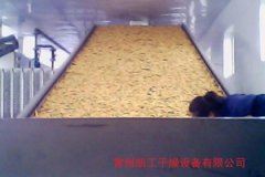 脱水蔬菜专用干燥机
