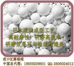 進口超耐磨氧化鋁球