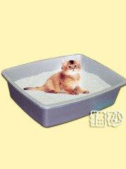科帝欧猫砂的图片