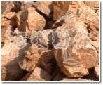 钾、钠长石系列