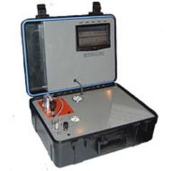 MODEL 312 便携式色谱分析仪