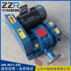 ZZR-50V/60V型真空泵
