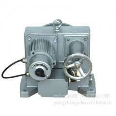 DKJ-210CX(100NM)電動執行器