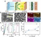 物理所等开发电化学活性多功能隔膜涂层提升锂硫电池性能