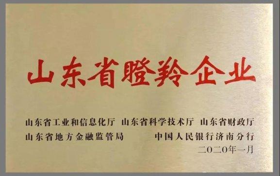 山东省第三批瞪羚企业名单出炉:华特磁电入围