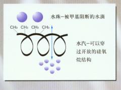 道康寧乳液349 ——聚二甲基硅氧烷水性乳液