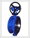 D343H蜗轮传动硬密封蝶阀的图片
