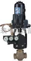 Hi-Flow系列(2000VA)氣動薄膜調節閥