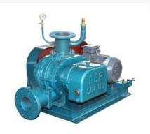 XHSR50V罗茨真空泵