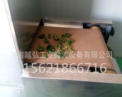 茶葉微波干燥設備|可連續生產